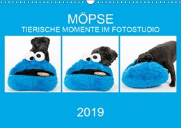 Abbildung von Dodeck | MÖPSE - tierische Momente im Fotostudio (Wandkalender 2019 DIN A3 quer) | 3. Edition 2018 | 2018 | Möpse im Fotostudio fotografie...