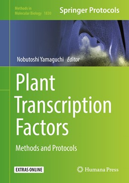 Abbildung von Yamaguchi | Plant Transcription Factors | 2018 | Methods and Protocols