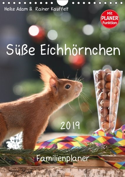 Süße Eichhörnchen (Wandkalender 2019 DIN A4 hoch) | Adam | 2. Edition 2018, 2018 (Cover)