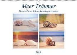 Abbildung von Gierok   Meer Träumer - Muscheln und Schnecken Impressionen (Wandkalender 2019 DIN A2 quer)   2. Edition 2018   2018   Muscheln und Meeresschnecken g...