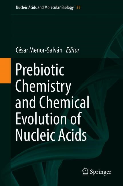 Abbildung von Menor-Salván | Prebiotic Chemistry and Chemical Evolution of Nucleic Acids | 1st ed. 2018 | 2018