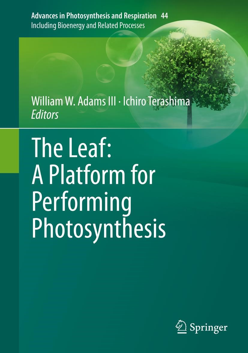 Abbildung von Adams III / Terashima | The Leaf: A Platform for Performing Photosynthesis | 1st ed. 2018 | 2018