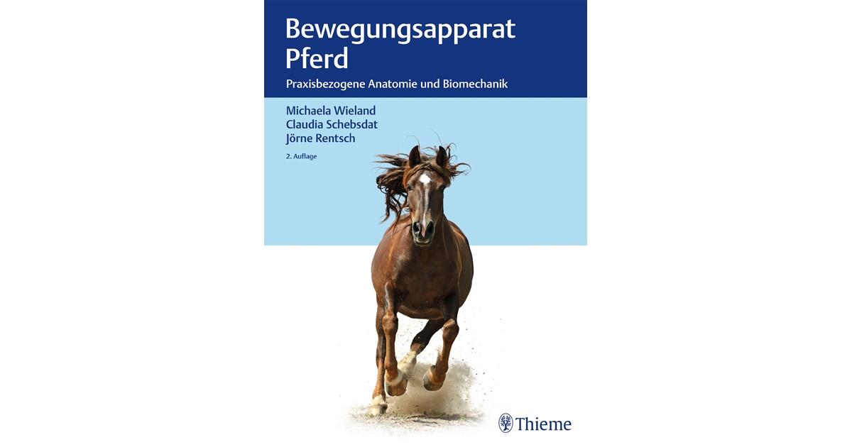 Wunderbar Pferd Anatomie Bilder Galerie - Anatomie Ideen - finotti.info