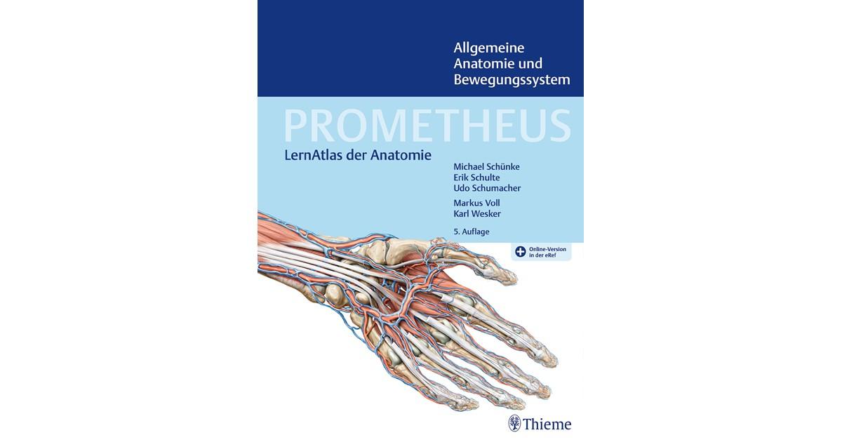 PROMETHEUS Allgemeine Anatomie und Bewegungssystem | Schünke ...