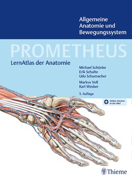 Abbildung von Schünke / Schulte / Schumacher   PROMETHEUS Allgemeine Anatomie und Bewegungssystem   5. überarbeitete Auflage   2018   LernAtlas der Anatomie