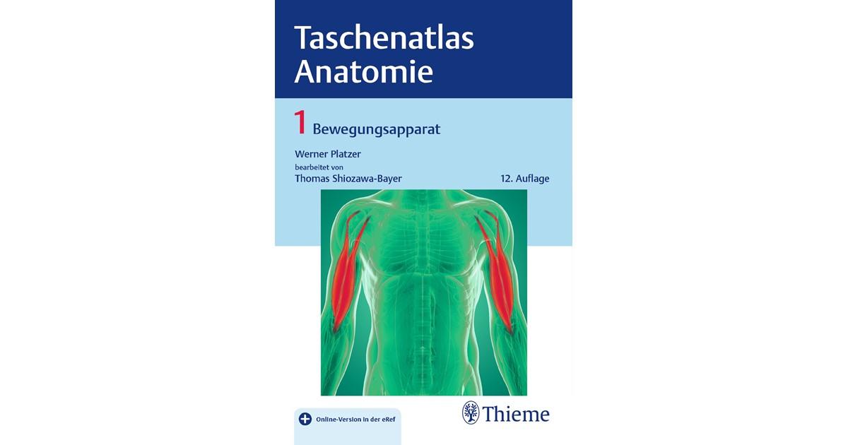 Taschenatlas Anatomie • Band 1: Bewegungsapparat | Platzer ...