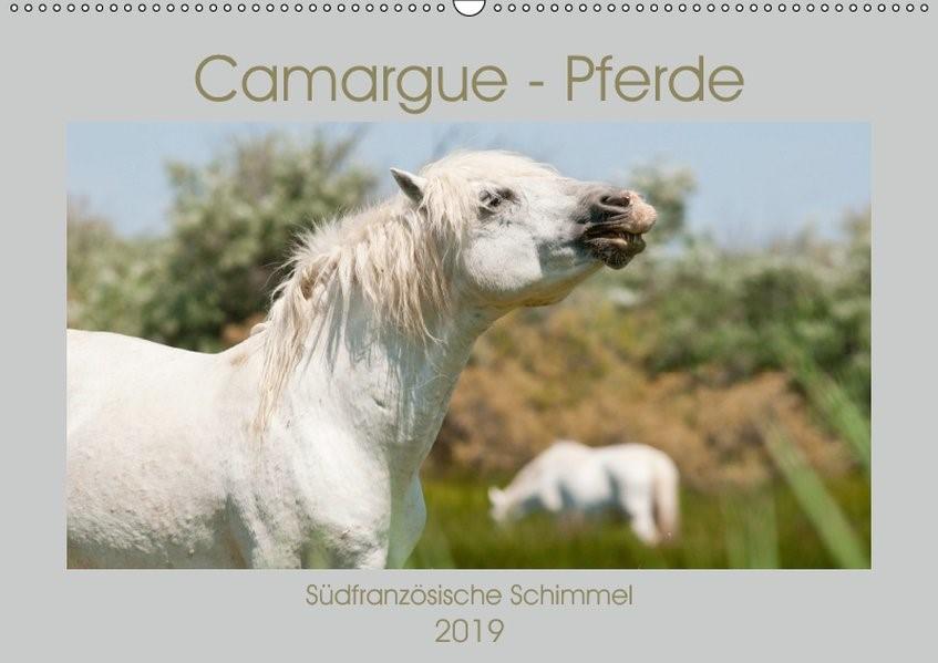 Abbildung von Bölts | Camargue-Pferde - Südfranzösische Schimmel (Wandkalender 2019 DIN A2 quer) | 3. Edition 2018 | 2018