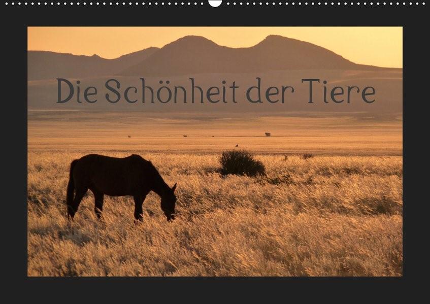 Die Schönheit der Tiere (Wandkalender 2019 DIN A2 quer) | Olschner | 6. Edition 2018, 2018 (Cover)