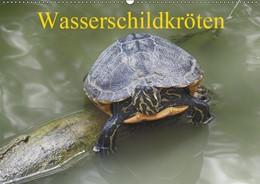 Abbildung von Kretschmann | Wasserschildkröten (Wandkalender 2019 DIN A2 quer) | 5. Edition 2018 | 2018 | Die europäische Sumpfschildkrö...