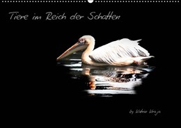 Abbildung von Kraja | Tiere im Reich der Schatten (Wandkalender 2019 DIN A2 quer) | 5. Edition 2018 | 2018 | Verschiedene Tiere mit Licht u...