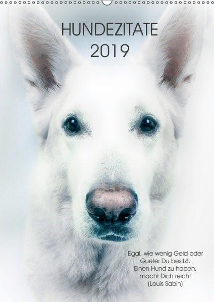 Abbildung von Dogmoves | Hundezitate 2019 (Wandkalender 2019 DIN A2 hoch) | 4. Edition 2018 | 2018