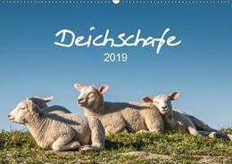 Abbildung von Giesers   Deichschafe (Wandkalender 2019 DIN A2 quer)   4. Edition 2018   2018   Schafe auf dem Deich an der No...
