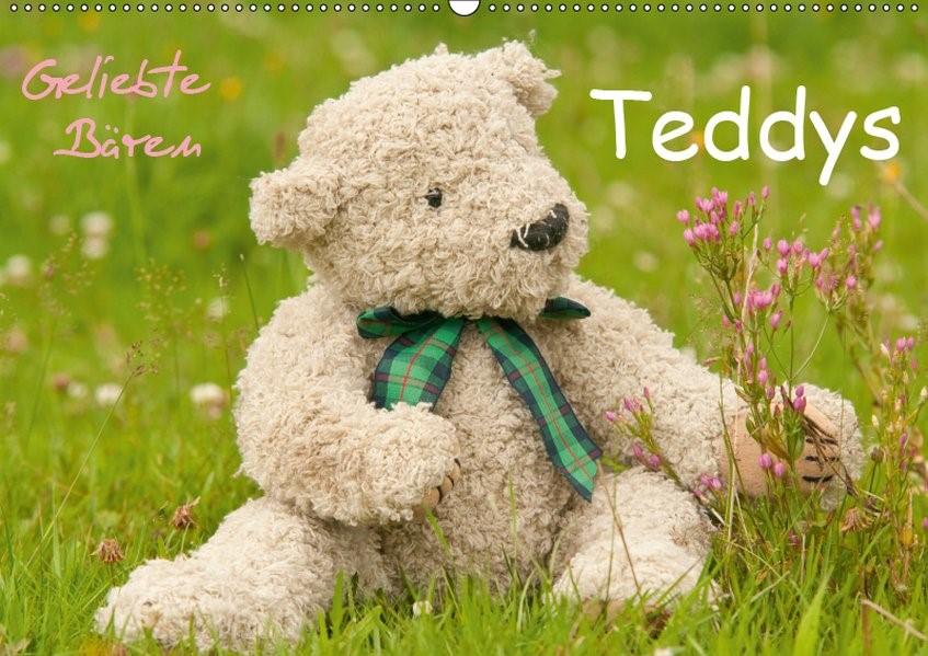 Abbildung von Bölts | Geliebte Bären - Teddys (Wandkalender 2019 DIN A2 quer) | 4. Edition 2018 | 2018