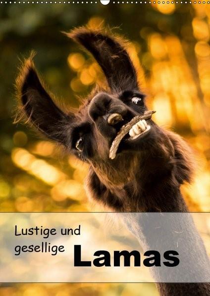 Abbildung von Mentil | Lustige und gesellige Lamas 2019 (Wandkalender 2019 DIN A2 hoch) | 4. Edition 2018 | 2018