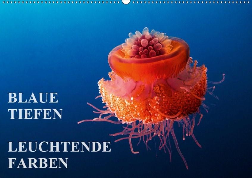 Abbildung von Adler | Blaue Tiefen - Leuchtende Farben (Wandkalender 2019 DIN A2 quer) | 3. Edition 2018 | 2018