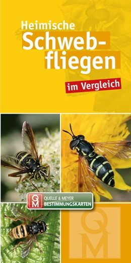 Abbildung von Quelle & Meyer Verlag   Heimische Schwebfliegen im Vergleich   1. Auflage   2018   beck-shop.de