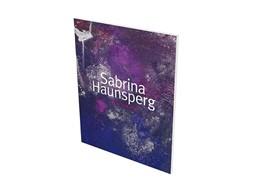 Abbildung von Schaufler-Münch / Bergmann | Sabrina Haunsperg: Werke 2008-2018 | 2018 | Kat. Schauwerk Sindelfingen