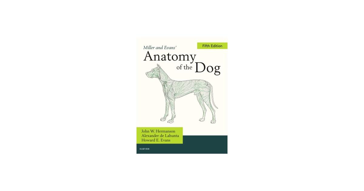 Millers Anatomy Of The Dog Hermanson De Lahunta 2019 Buch