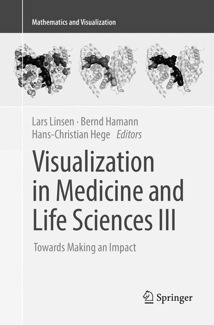 Visualization in Medicine and Life Sciences III | Linsen / Hamann / Hege | Softcover reprint of the original 1st ed. 2016, 2018 | Buch (Cover)