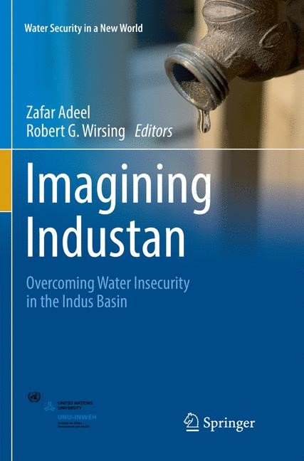 Imagining Industan | Adeel / Wirsing | Softcover reprint of the original 1st ed. 2017, 2018 | Buch (Cover)