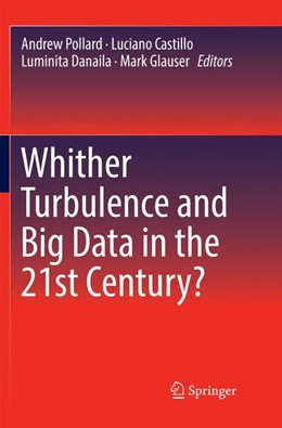 Abbildung von Pollard / Castillo / Danaila / Glauser | Whither Turbulence and Big Data in the 21st Century? | Softcover reprint of the original 1st ed. 2017 | 2018