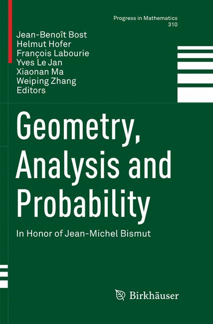 Geometry, Analysis and Probability | Bost / Hofer / Labourie / Le Jan / Ma / Zhang | Softcover reprint of the original 1st ed. 2017, 2018 | Buch (Cover)
