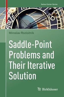 Abbildung von Rozložník | Saddle-Point Problems and Their Iterative Solution | 1. Auflage | 2018 | beck-shop.de