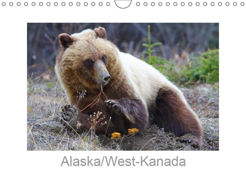Alaska/West-Kanada (Wandkalender 2019 DIN A4 quer) | Braue | 1. Edition 2018, 2018 (Cover)