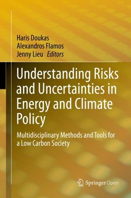 Abbildung von Doukas / Flamos / Lieu | Understanding Risks and Uncertainties in Energy and Climate Policy | 1st ed. 2019 | 2018 | Multidisciplinary Methods and ...