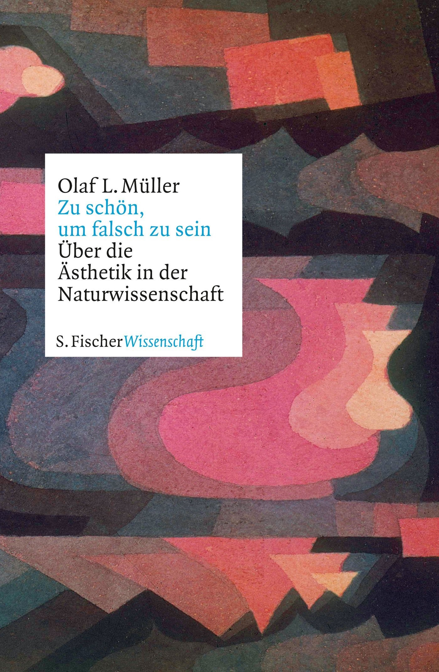 Zu schön, um falsch zu sein | Müller | 1. Auflage, 2019 | Buch (Cover)