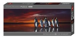 Abbildung von Heever | King Penguins Puzzle | 1. Auflage | 2018 | beck-shop.de