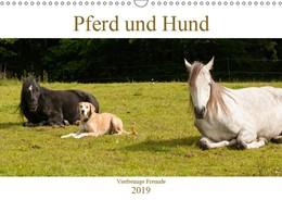 Abbildung von Bölts | Pferd und Hund - Vierbeinige Freunde (Wandkalender 2019 DIN A3 quer) | 1. Edition 2018 | 2018 | Pferd, Pony und Hund in Harmon...