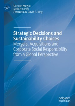 Abbildung von Meglio / Park | Strategic Decisions and Sustainability Choices | 1st ed. 2019 | 2019 | Mergers, Acquisitions and Corp...