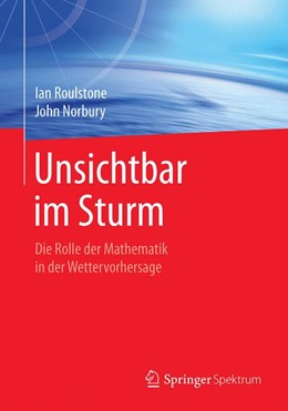 Abbildung von Roulstone / Norbury   Unsichtbar im Sturm   1. Auflage   2019   beck-shop.de