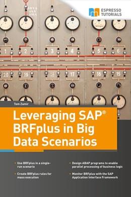Abbildung von Zamir | Leveraging SAP BRFplus in Big Data Scenarios | 2018