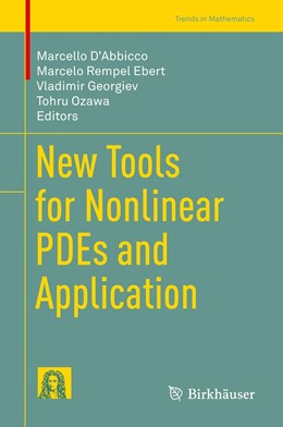 Abbildung von D'Abbicco / Ebert   New Tools for Nonlinear PDEs and Application   1. Auflage   2019   beck-shop.de