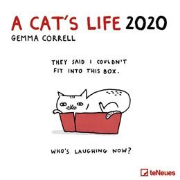 Abbildung von A Cat's life 2020 Broschürenkalender | 2019