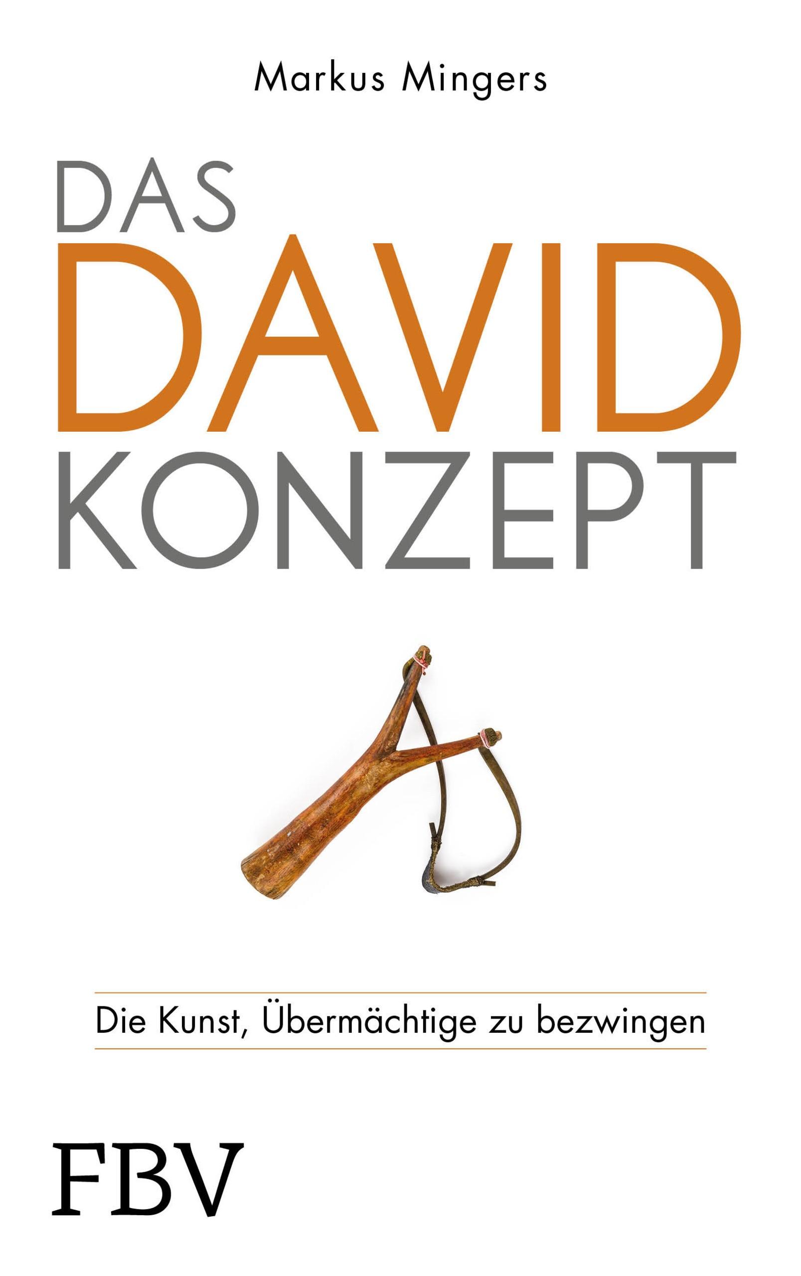 Das David-Konzept | Mingers, 2019 | Buch (Cover)