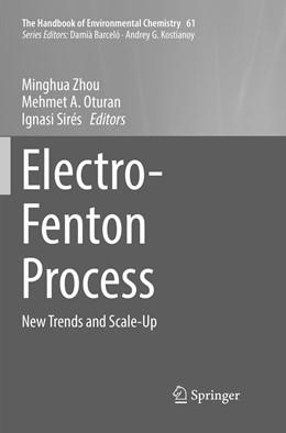 Abbildung von Zhou / Oturan / Sirés | Electro-Fenton Process | Softcover reprint of the original 1st ed. 2018 | 2019