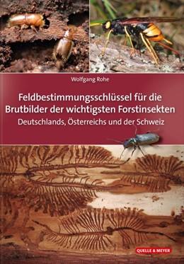 Abbildung von Rohe   Die Brutbilder der wichtigsten Forstinsekten   1. Auflage   2019   beck-shop.de