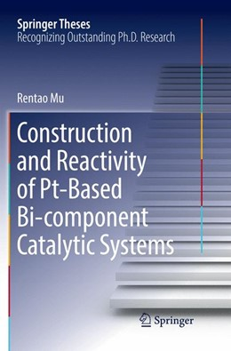 Abbildung von Mu | Construction and Reactivity of Pt-Based Bi-component Catalytic Systems | Softcover reprint of the original 1st ed. 2017 | 2018