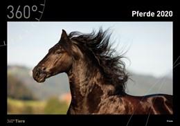 Abbildung von 360° Pferde Kalender 2020   2019