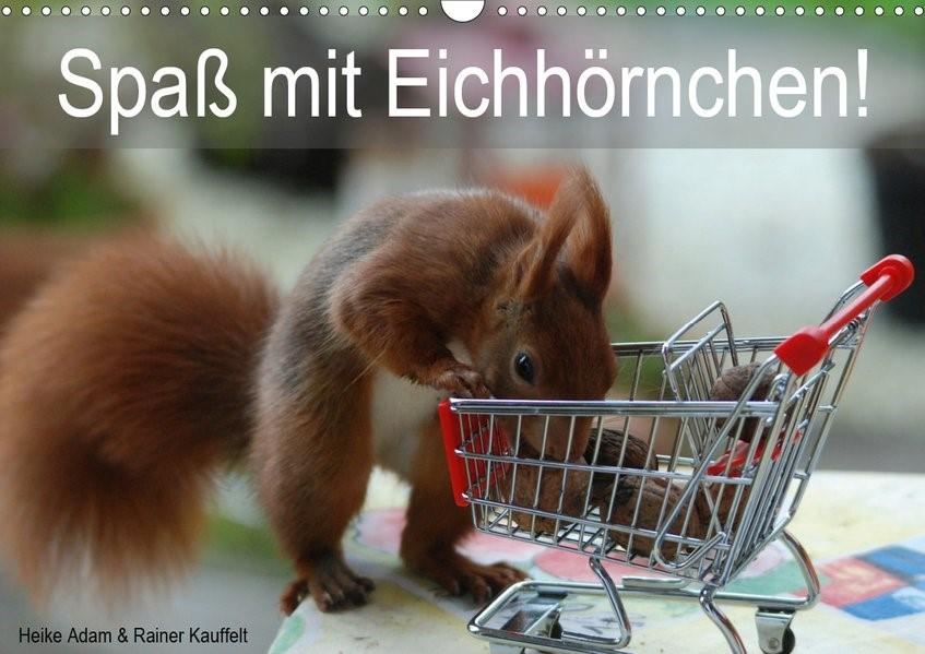 Abbildung von Adam | Spaß mit Eichhörnchen! (Wandkalender 2020 DIN A3 quer) | 5. Edition 2019 | 2019