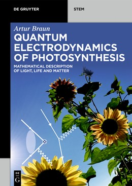 Abbildung von Braun | Quantum Electrodynamics of Photosynthesis | 2020 | Mathematical Description of Li...