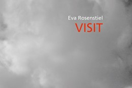 Abbildung von Rosenstiel | Visit | 1. Auflage | 2019 | beck-shop.de