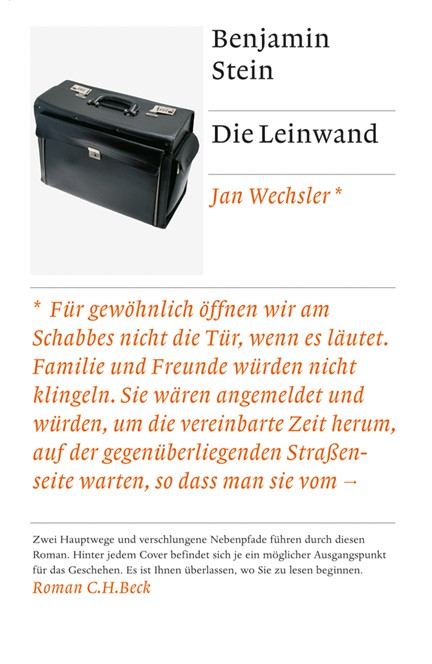 Cover: Benjamin Stein, Die Leinwand
