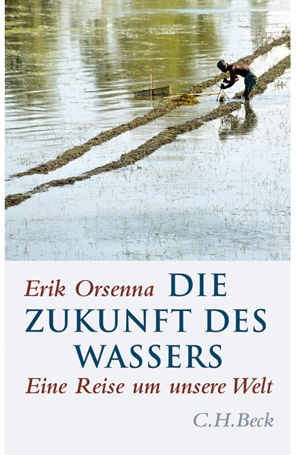 Cover: Érik Orsenna, Die Zukunft des Wassers