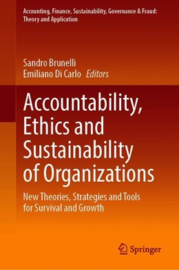 Abbildung von Brunelli / Di Carlo | Accountability, Ethics and Sustainability of Organizations | 1st ed. 2020 | 2019 | New Theories, Strategies and T...
