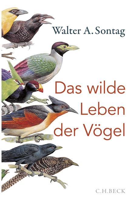 Cover: Walter A. Sontag, Das wilde Leben der Vögel