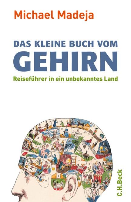 Cover: Michael Madeja, Das kleine Buch vom Gehirn